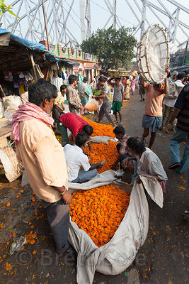 Workers at the Howrah Flower Market, commonly referred to as the largest flower market in Asia. Near Howrah Bridge along the Hooghly River, Kolkata, India.
