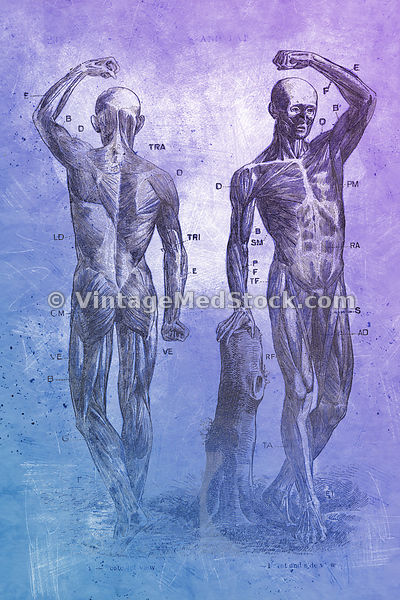 Two Men Standing | Digital Illustration