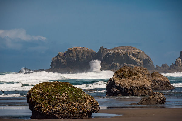 Oregon_Coast-31
