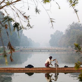 A man washes clothes in a canal on Rajpath at dawn. Designed by Sir Edward Lutyens, the wide boulevards surrounded by parklands and ponds, were key components of New Delhi