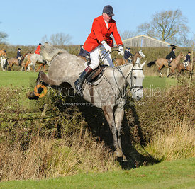 jumping a hedge near Knossington village