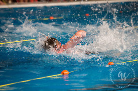 Waihi_Swimming_Sports_2017-36