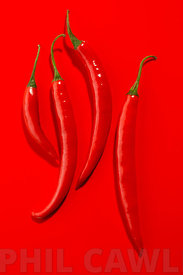 4 Red Chillies on a red background