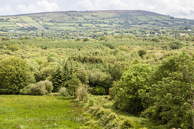 HR-Burren-Ireland2014-8001