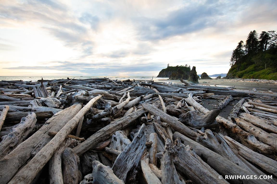 RUBY BEACH OLYMPIC NATIONAL PARK WASHINGTON PACIFIC NORTHWEST COAST