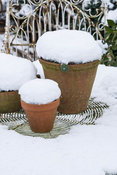Terracotts pots under a blanket of snow. Yews Farm, Martock, Somerset, UK