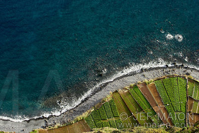 Field terraces by the sea