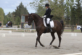 SI_Festival_of_Dressage_310115_Level_4_Champ_0585