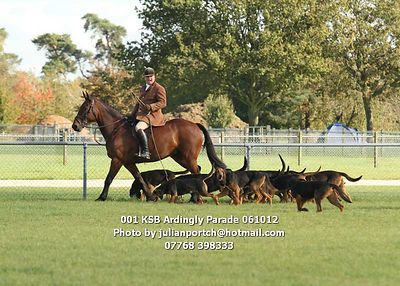 2012-10-06 KSB Ardingly Hound Parade photos