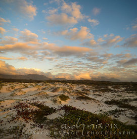 Table Mountain viewed from the sand dunes at Muizenberg Beach at sunrise.