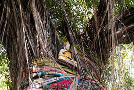A statue of Buddha at a tree shrine in Bangkok.