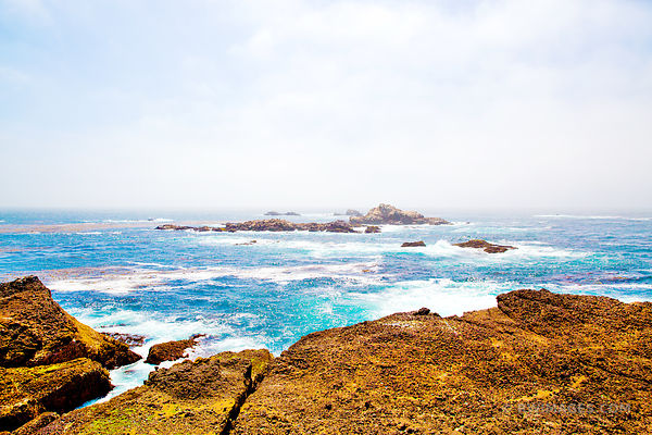 POINT LOBOS STATE NATURAL RESERVE, CALIFORNIA, USA