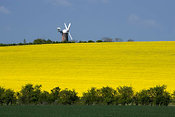 Wilton windmill, Wiltshire