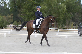 SI_Festival_of_Dressage_310115_Level_8_MFS_1102