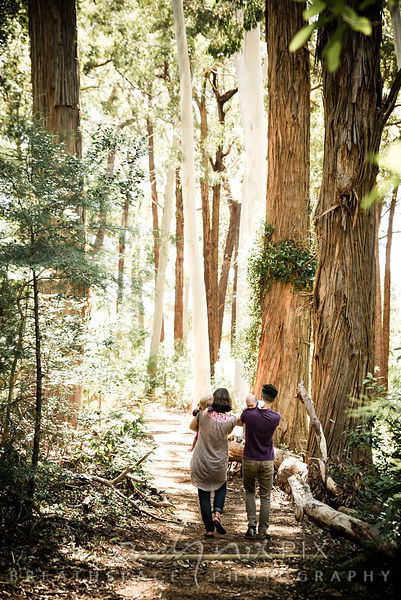 Family photos in Tokai Forest