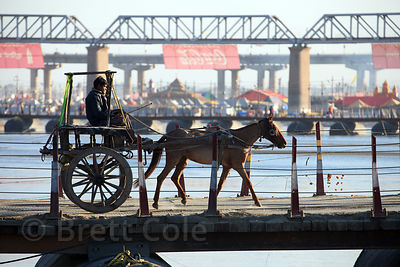 A horse-drawn carriage crosses a pontoon bridge across the Ganges River at the 2013 Kumbh Mela, Allahabad, India.
