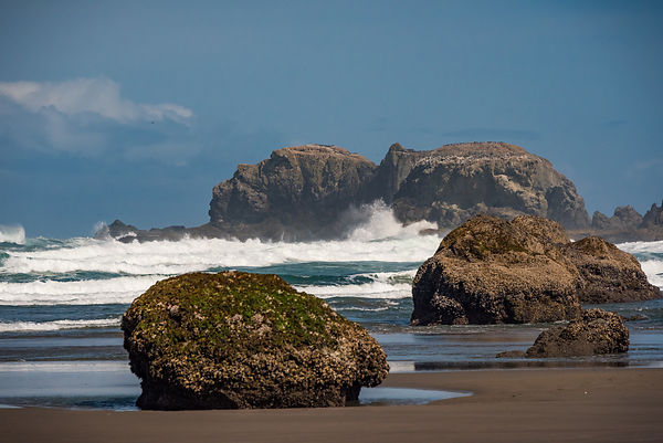 Oregon_Coast-29