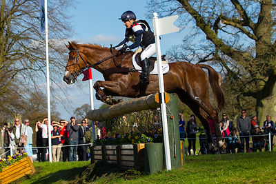 Badminton Horse Trials 2013 photos
