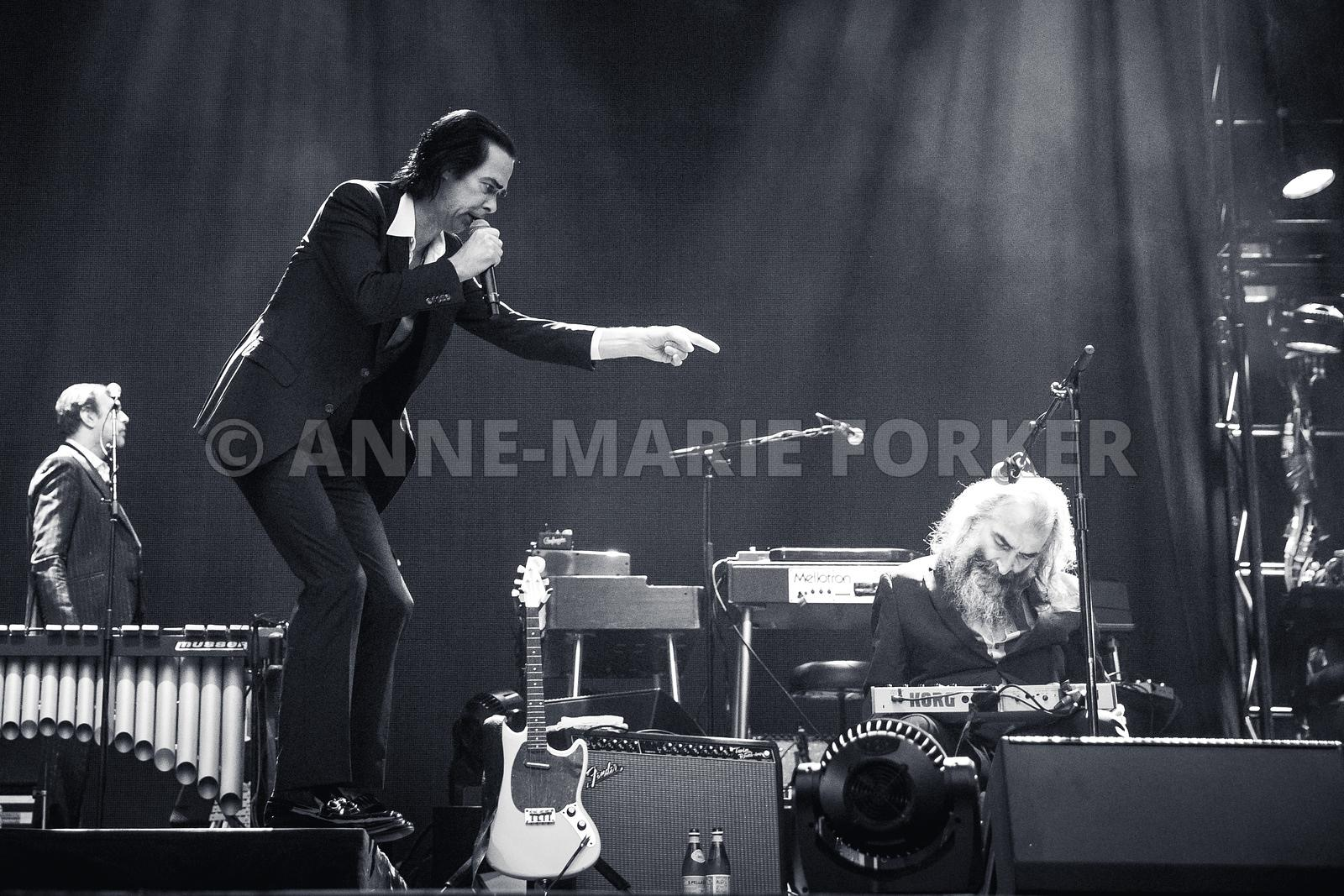 Nick_Cave_-_AM_Forker-7443