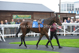 3.20pm 30th Sept 2013 Novices Handicap Hurdle with winner Multitude Of Sins