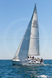Maris Otter, GBR 3519L, Legend 35.5, 20170526077