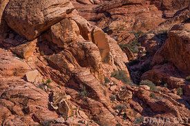 Red-Rocks-300dpi-fullsize-40