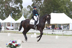 SI_Festival_of_Dressage_310115_Level_6_7_MFS_0654