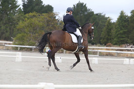 SI_Festival_of_Dressage_310115_Level_8_MFS_1121
