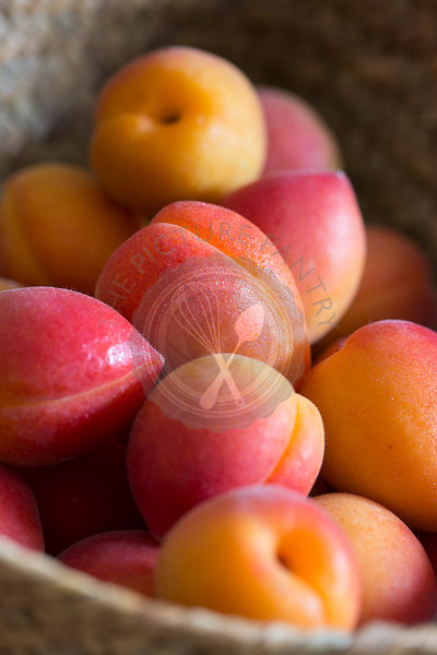 Mallorca grown two toned pink and red apricots in a woven basket