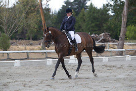 SI_Festival_of_Dressage_300115_Level_3_NCF_0096