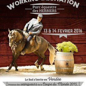 Les Herbiers 2016 photos