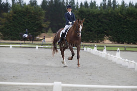 SI_Festival_of_Dressage_300115_Level_4_JLT_0115