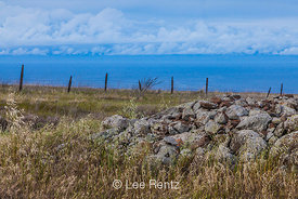 Rock Pile and Fence Show Agricultural Roots of Santa Cruz Island