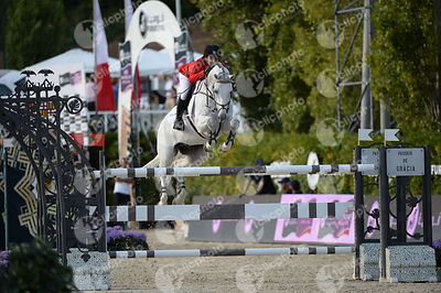 Abdel SAID ,(EGY), VINGINO during Longines Cup of the City of Barcelona competition at CSIO5* Barcelona at Real Club de Polo, Barcelona - Spain