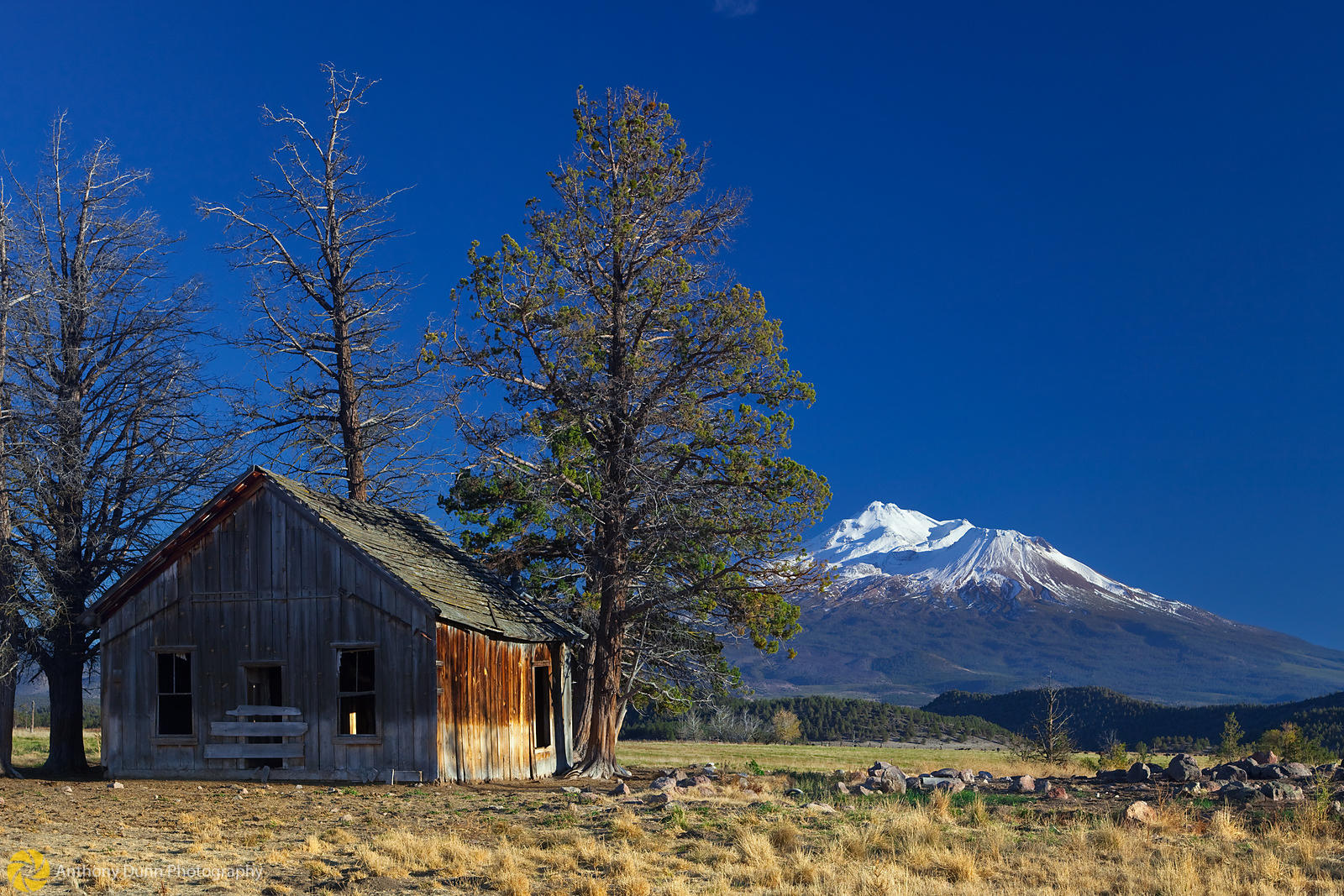 Shack Under Mt. Shasta