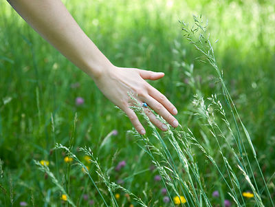 woman running hand through grass