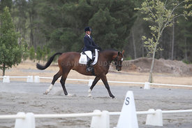 SI_Festival_of_Dressage_310115_Level_1_Champ_0669