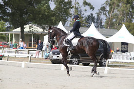 SI_Festival_of_Dressage_310115_Level_6_7_MFS_0625