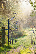 Morning sun reaches a gate made by the late Dave Bissell depicting dragonflies and bulrushes. Moors Meadow Garden and Nursery, Bromyard, Herefordshire, UK