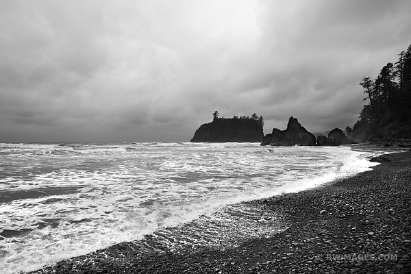 RUBY BEACH OLYMPIC NATIONAL PARK BLACK AND WHITE