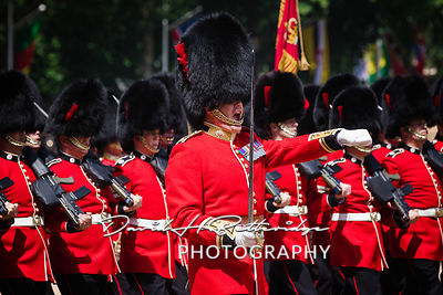 Trooping_the_Colour_8807A