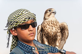 Tourist and Peregrine Falcon, Dubai, UAE