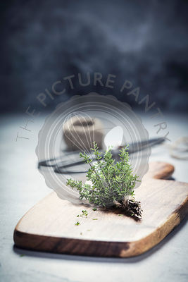 bunch of thyme and scissors on grey concrete background