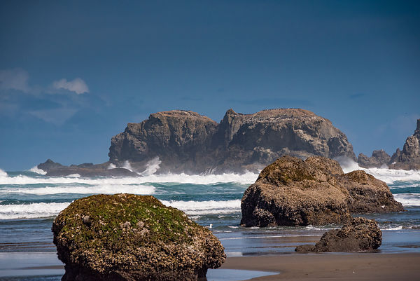 Oregon_Coast-25