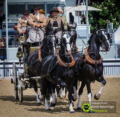 Royal_Windsor_Horse_Show_2017_016