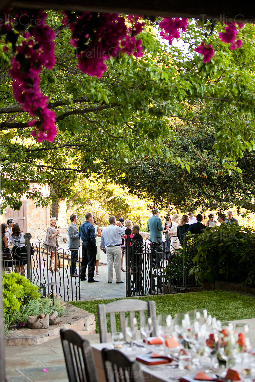 Selective focus view of party at outdoor wedding under lush trees in garden