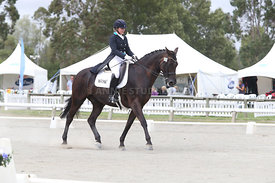 SI_Festival_of_Dressage_310115_Level_6_7_MFS_0638