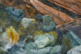 Colorful logs and rocks in the current at Perry Creek Falls, Mt. Baker-Snoqualmie National Forest, Cascade Mountains, Washington, USA, August, 2008_WA_4628