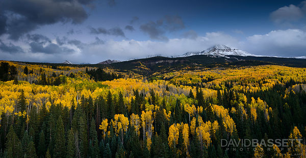 Aspens at Twilight | San Juan Mountains, CO