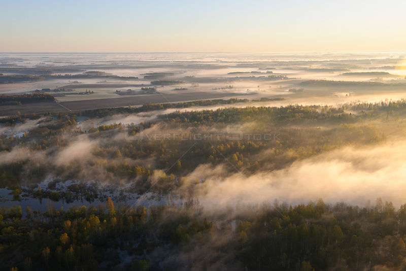 Mist over lowland forests at dawn. Near the Emajogi River, Estonia, Europe, May 2010.
